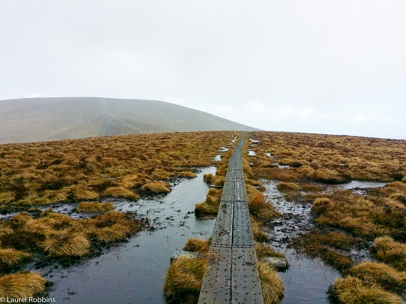 I loved walking over the bog on White Hill in the Wicklow Mountains. Once it stopped raining, the views were incredible!