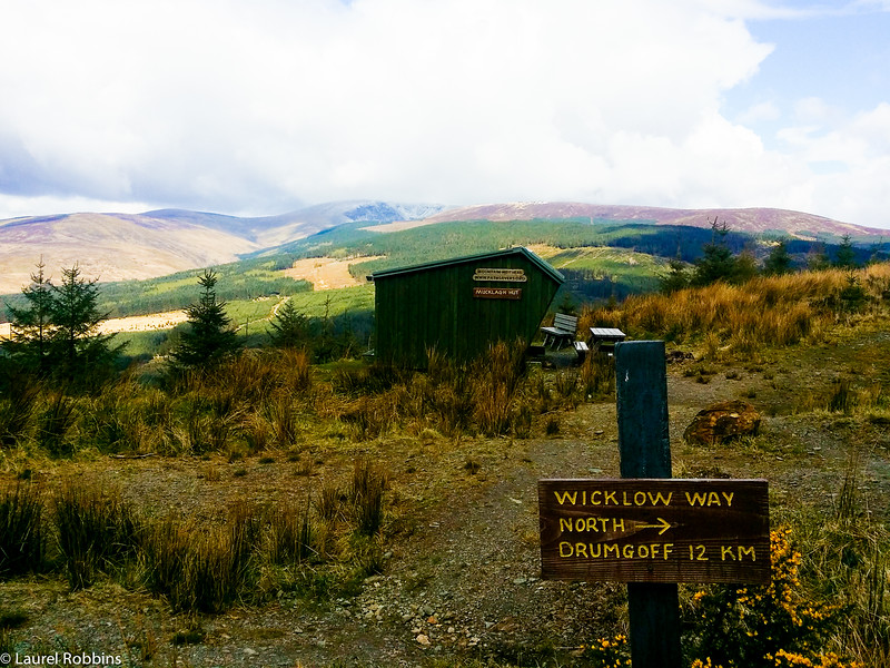 Wicklow Way between Moyne and Drumgoff