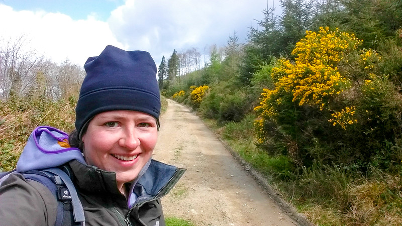 walking the Wicklow Way between Clonegal to Shillelagh