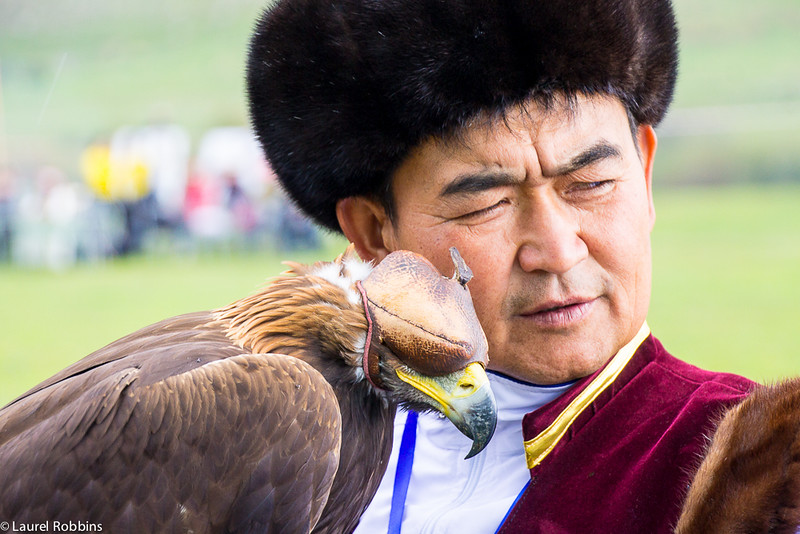 Falconer reassuring his bird at the World Nomad Games.