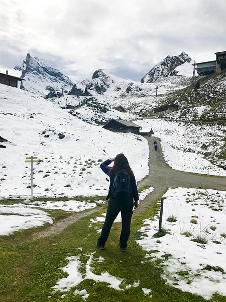 Zillertal Adventures