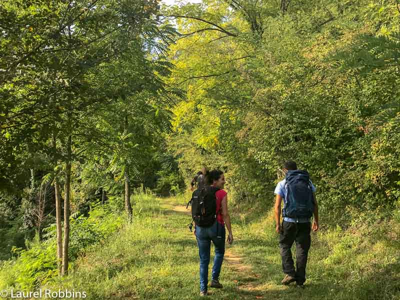 You'll hike in forests, on ridges and on roads on the Path of Gods Italy.