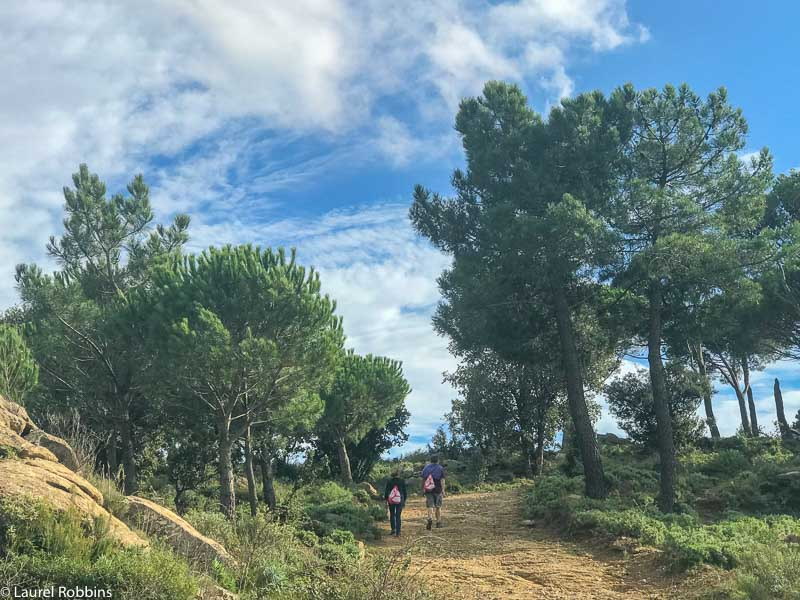 Hikers walking from Spain to France.