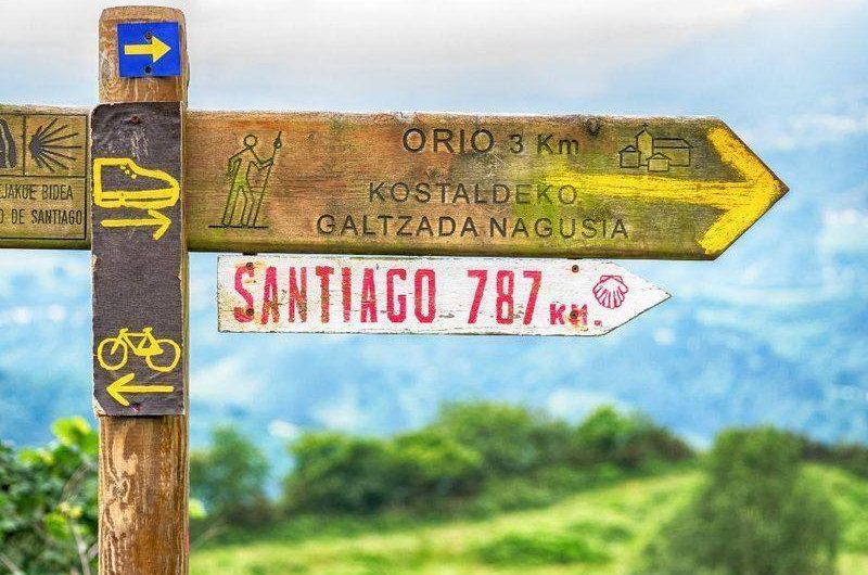 walking the last 100 km of the Camino Santiago