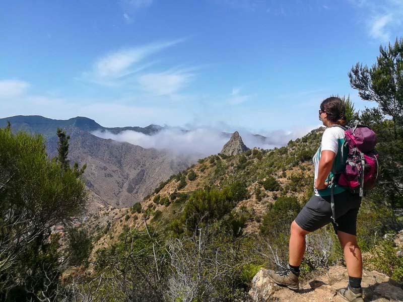 Laurel hiking in La Gomera