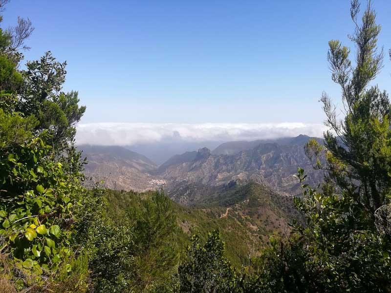 Garajonay National Park viewpoint