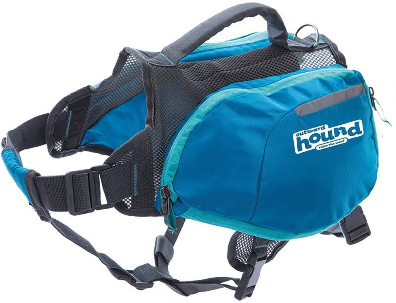 Dog backpacks are a great gift for hikers with dogs.