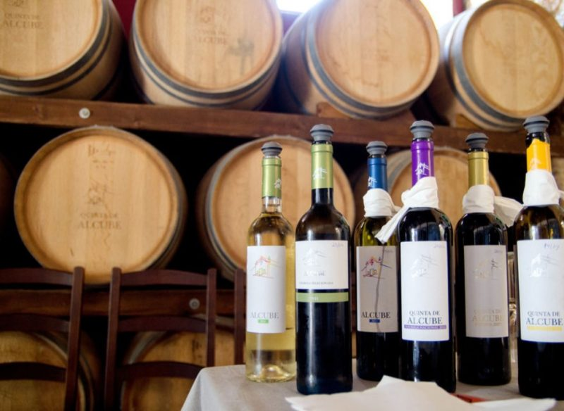 A great wine tour in Portugal
