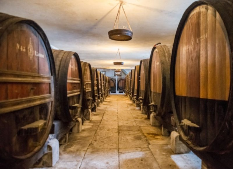 Explore Setubal, Portugal with this great wine tour