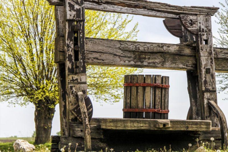 Enjoy a visit to Austria's beautiful wineries