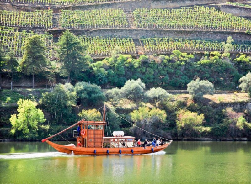 Enjoy the best wine tours in Portugal