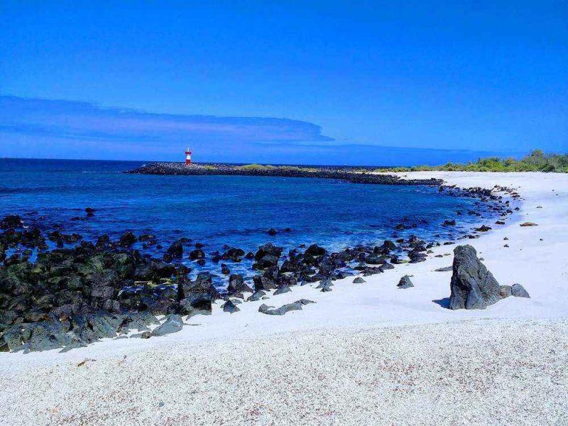 Take a wonderful Virtual tour of the Galapagos Islands