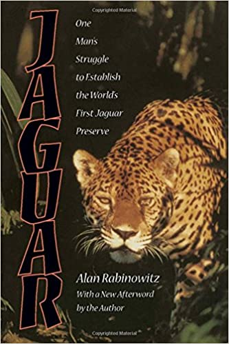 Jaguars are one of the most fascinating big cats you can read about.
