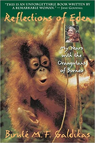 Wildlife book about orangutans
