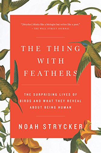 The Things with Feathers by Noah Strycker
