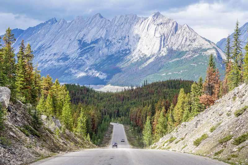 Jasper is the perfect travel destination all year round offering many things to do no matter the weather