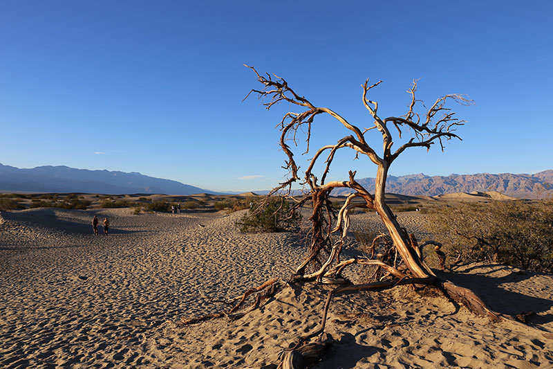 Death Valley Natioanl Park is an excellent place to find hikes of every level