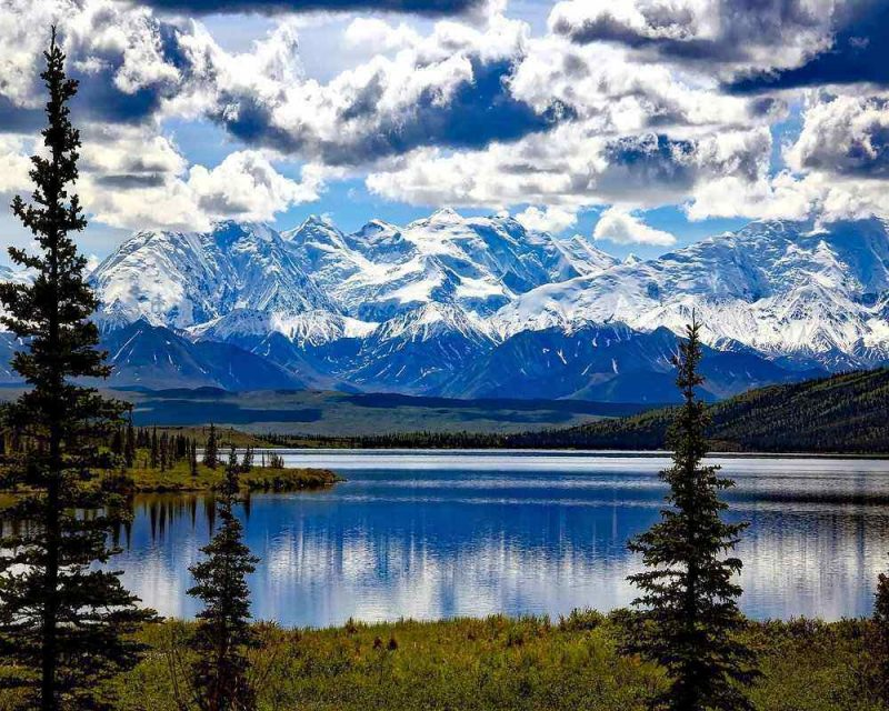 Hiking in Denali National Park is one of the best reasons for visiting Denali