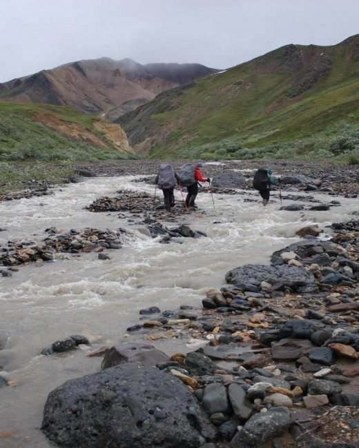 Denali National Park is the perfect pick if you love hiking.