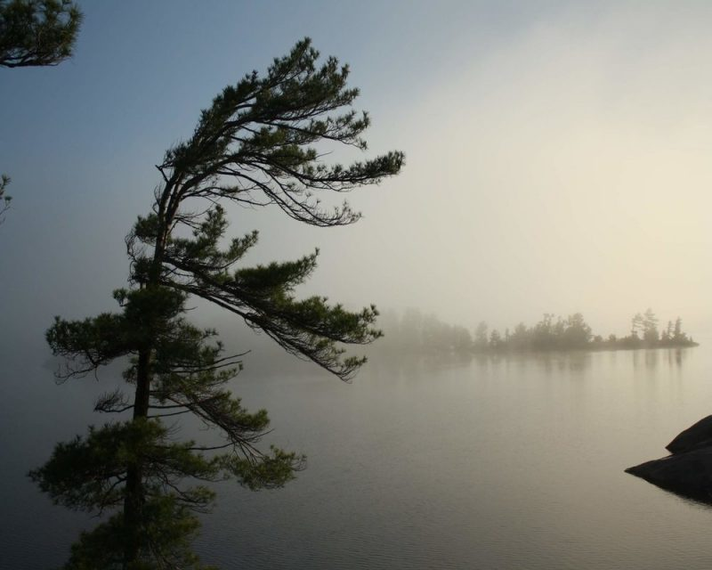 Even a misty day in Georgian Bay Islands National Park is something you don't want to miss.