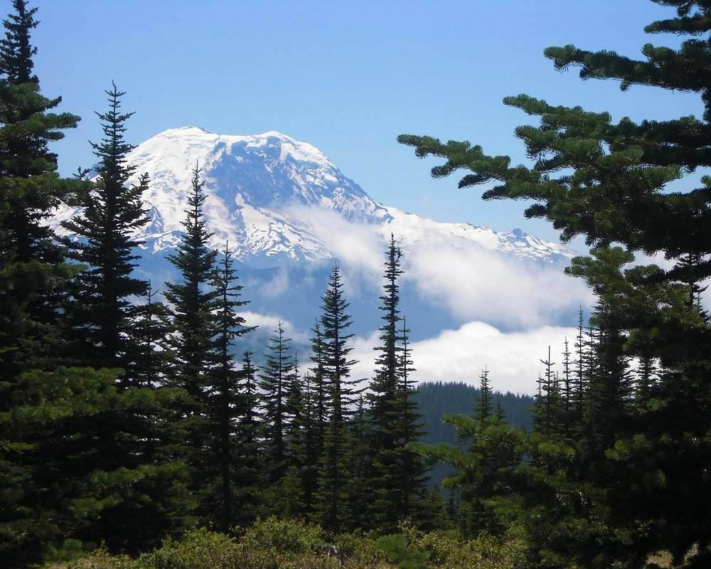 Mount Rainier is one of the best places to hike in the USA