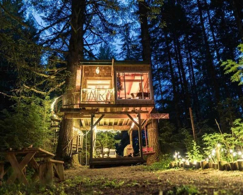 Treehouse rentals are unique and offer you a whole new experience