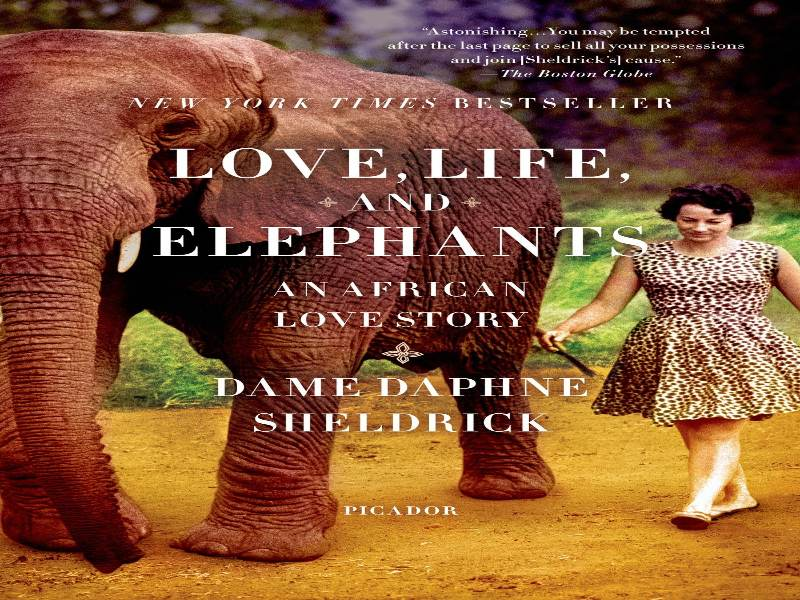 I loved reading this book about elephants written by a woman.