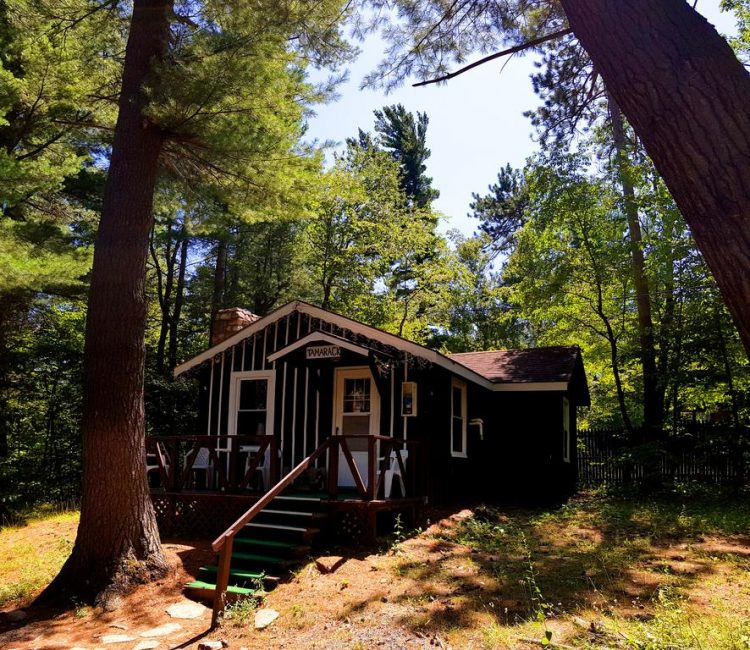 Enjoy a great cabin stay that has everything you need
