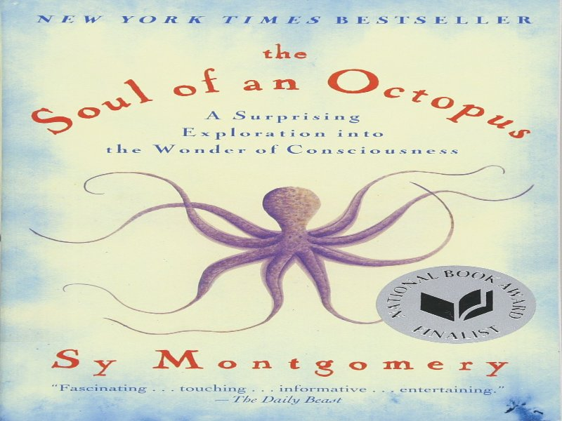 The Soul of an Octopus is a great read