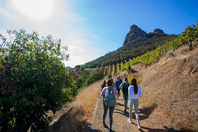 Hiking in a Malibu winery is a great adventure in California that everyone can enjoy