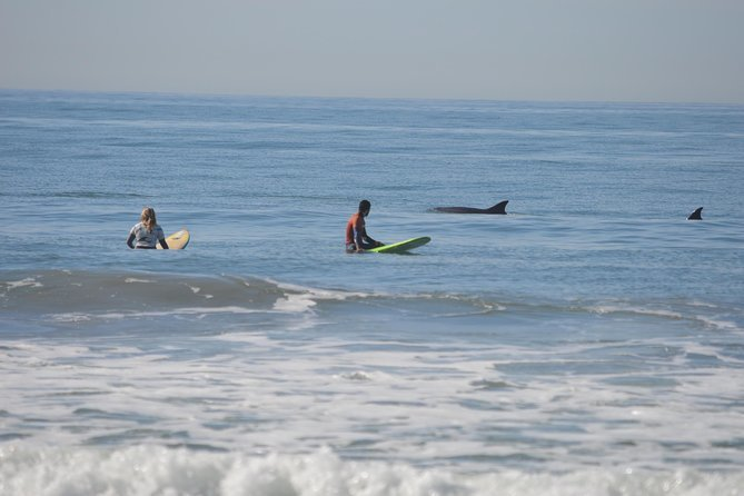 Learning to surf is a great adventure to try when in California