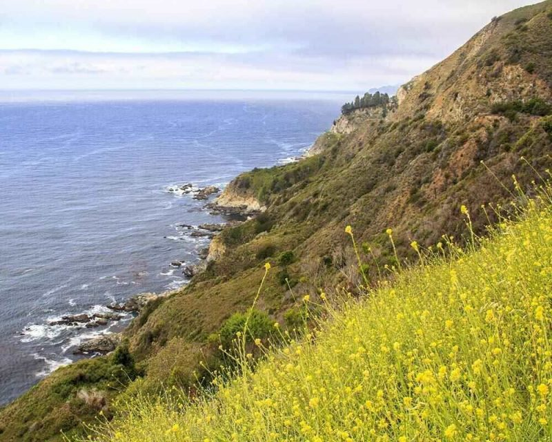 Cycling Big Sur is one of the most exciting adventure in California