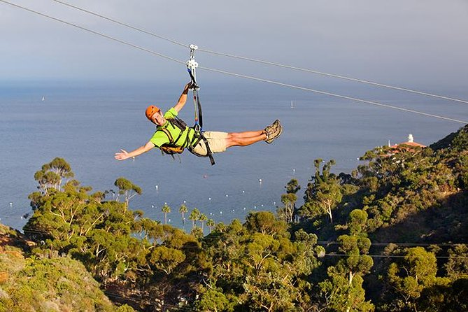 Zip Lining in California is the perfect adventure.