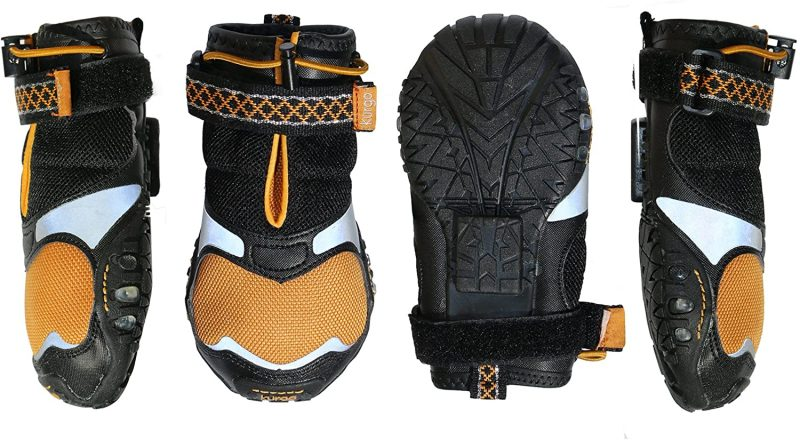 Dog shoes offer protection and comfort for canine hiking buddies.
