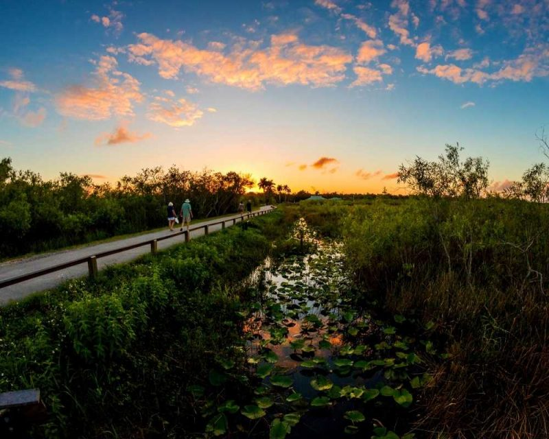 The Anhinga trail is short and perfect for the whole family. You'll see all kinds of amazing natural wonders on this hike