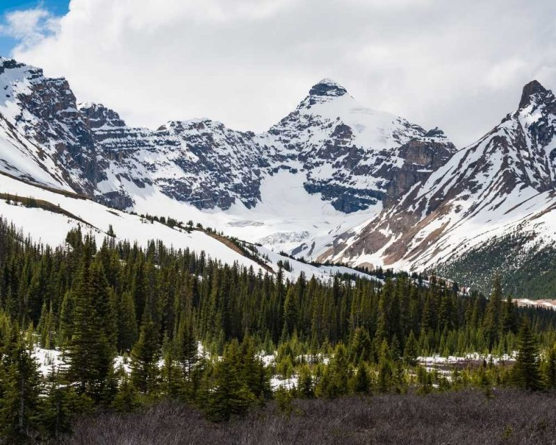 The Icefields Parkway has great snowshoeing trails.
