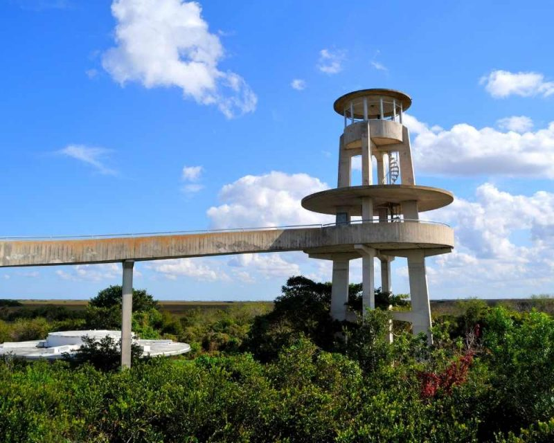 Biking in Shark Valley is one of the best things to do in the Everglades, Florida