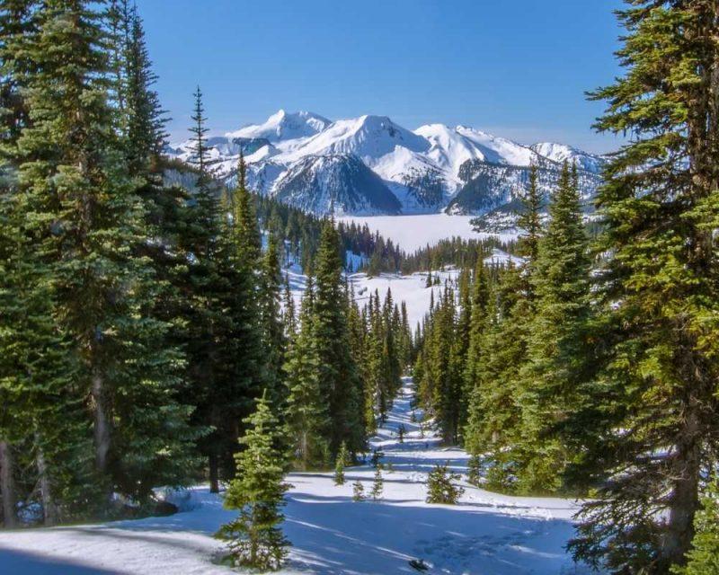 Snowshoeing in Whistler