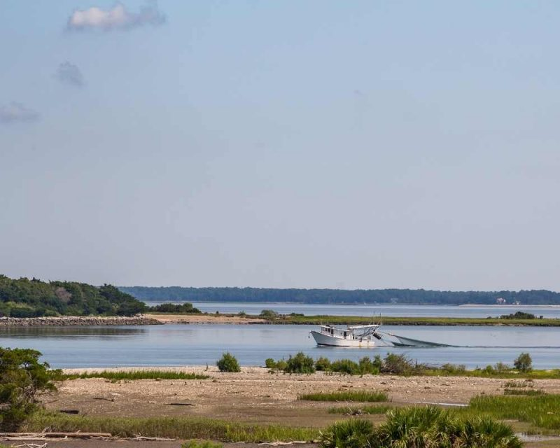 Get on a boat and discover a new side of Tybee Island.
