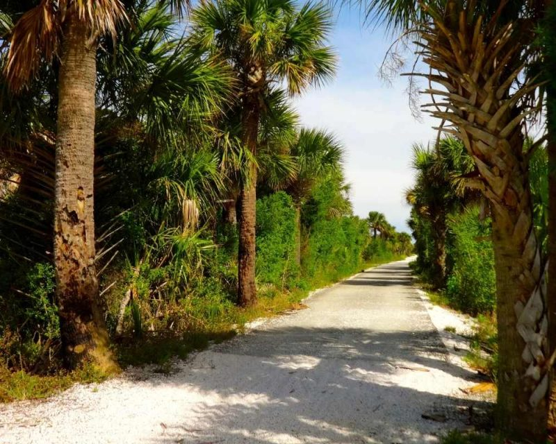 Hiking is a favourite thing to do on Tybee Island.