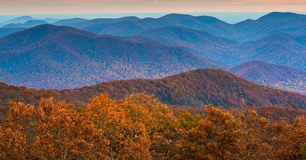 Treehouse Rentals in Georgia
