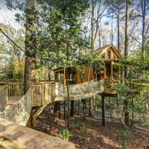 The Treehouse Escape - Treehouse rentals in Georgia