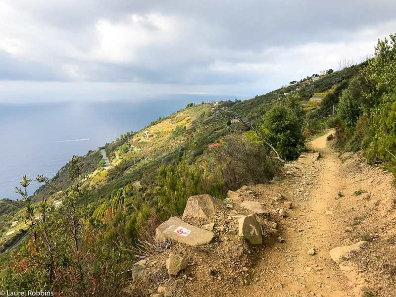 you get gorgeous sea views when hiking in Cinque Terre