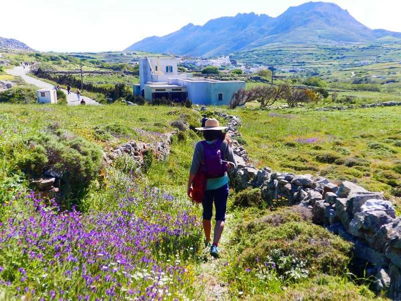 Hiking trails neat Flatados in Tinos
