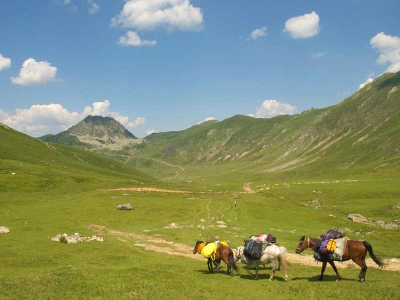 Horses will help carry your gear on your Via Dinarica Hiking Tour