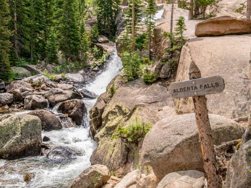 Alberta Falls is an easy hike in the Rocky Mountain National Park