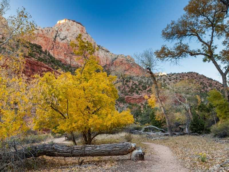 The Watchman Trail - Easy Hikes in Zion National Park