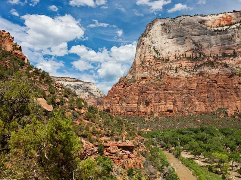 View from the Kayenta Trail; an easy hike in Zion National Park